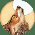 Cartas Xamânicas - Leitura Oracular